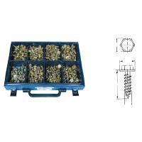 Levyruuvilajitelma: kuusiolevyruuvit aluslevyllä, sinkitty